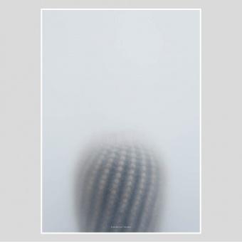 Kristina Dam Studio Poster Ball Cactus