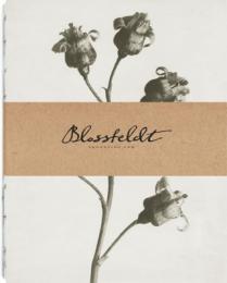 Blossfeldt anteckningsbok, 14,85x19 cm - Ribes Nigrum