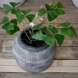 Azur pot No.1