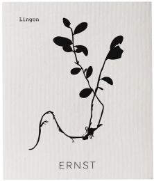 Disktrasa - Blandade växter