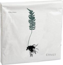 Servett - Ekbräken