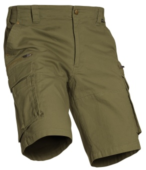 Chevalier Devon Shorts Green