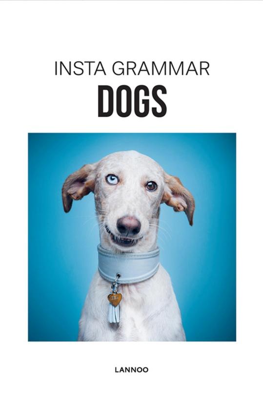 NEW MAGS - Instagrammar