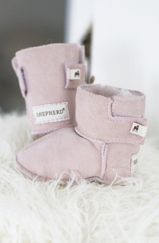 SHEPHERD - Baby Toffel