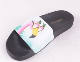 Flamingo Slip on