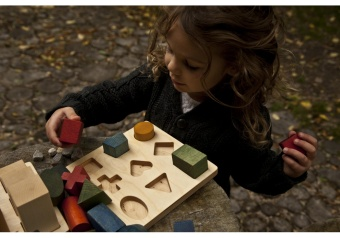 Natural Shape Puzzle - Wooden Story
