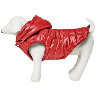 Equiline Dog Bomber
