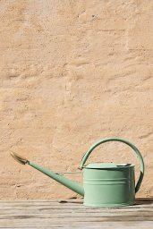 Vattenkanna Slimcan 5 Liter Ljusgrön