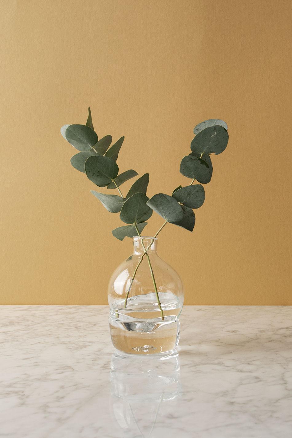 Vas Grow Stor