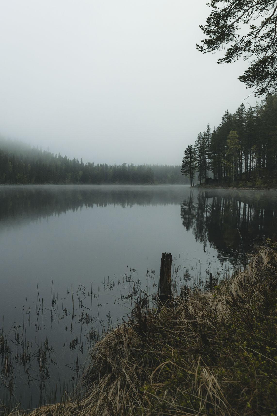 Print Misty Lake 70x100cm