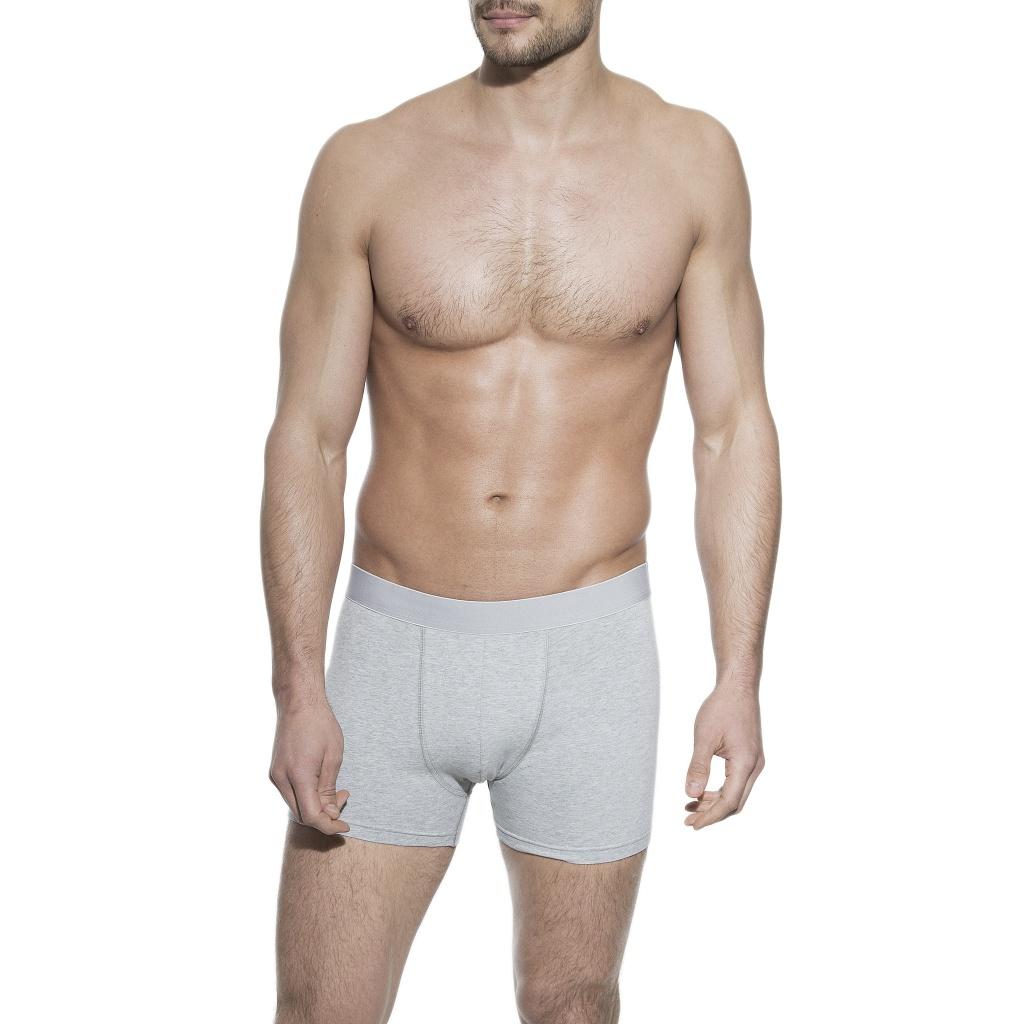 Boxer Brief Grey