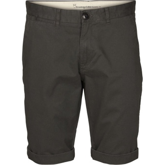 Chino Regular Shorts Phantom