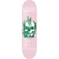 Habitat 8.125 Fernskully Skateboard