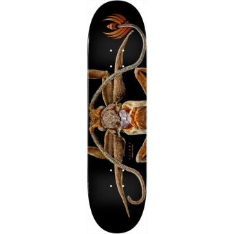 Powell 8.25 Flight® BISS Marion Moth deck
