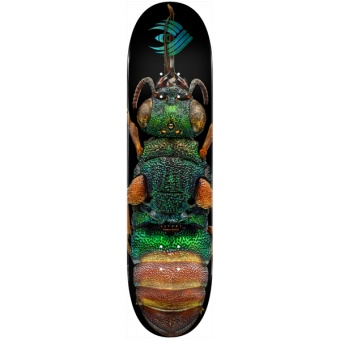 Powell 8.5 Flight® BISS Ruby Tailed Wasp deck