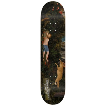 Darkstar 8.125 Scorpion Dagger R7 Skateboard