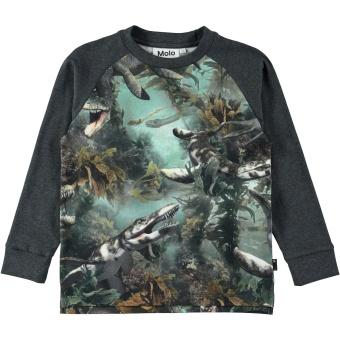 Ramiz T-Shirt LS Lake Monters