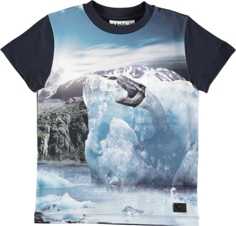 Raymont T-Shirt Melting Ice