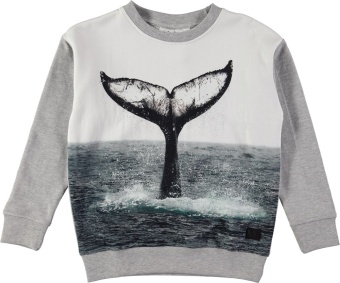 Morell Sweatshirt Whale Tail