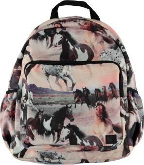 Big Backpack Wild Horses