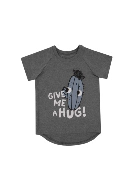 Cactus T-shirt Grey Mellange