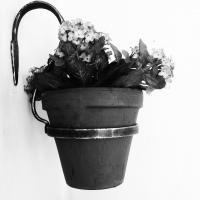 Ampel för blomkruka