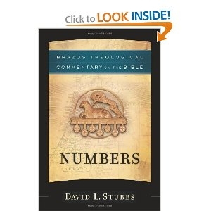 Numbers - Brazos Theological Commentary on the Bible (fd. SCM TCotB)