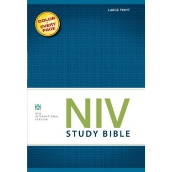 Study Bible, NIV, Large Print