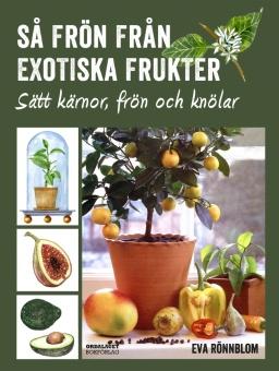 Så frön från exotiska frukter: Sätt kärnor, frön och knölar