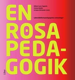En rosa pedagogik: jämställdhetspedagogiska utmaningar