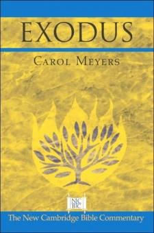 Exodus: The New Cambridge Bible Commentary (NCBC)