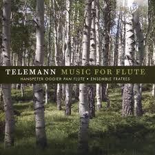 Music for Flute  - Hanspeter Oggier / Ensemble Fratres