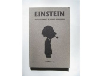 Einstein för envar