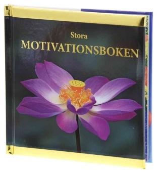 Stora Motivationsboken
