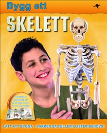 Bygg ett skelett