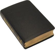 Folkbibeln 2015, konstskinn, svart, 133x200 mm