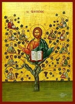 Kristus Vinträdet
