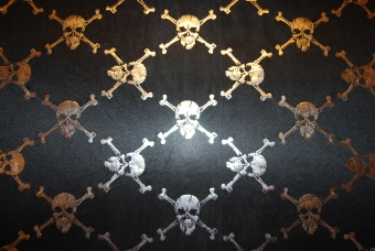 Skulls and bones stretchduchesse