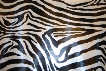 Zebra galon