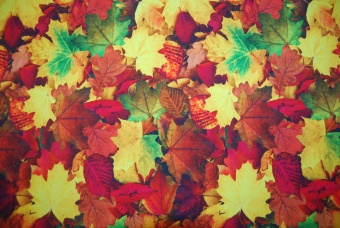 Fall leaves digitalt tryck