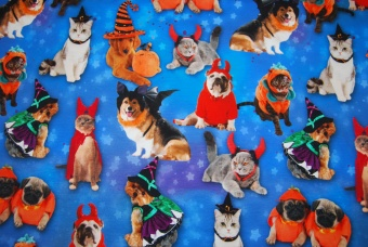 Halloween Cats & Dogs digitalt tryck