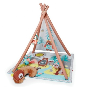 Babygym - Camping Cubs