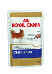 Chihuahua Adult Wet