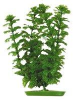 Plastväxt Ambulia 12,5cm