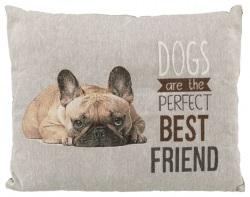 Chipo dyna, Fransk Bulldog,60 × 48 cm, grå
