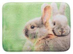 Dyna till kanin, 39 × 29 cm