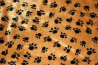 Hunddyna Beige med svarta tassavtryck 100x70cm