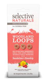Woodland Loops