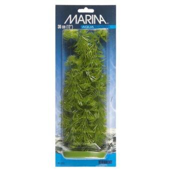 Plastväxt Hornwort 30cm