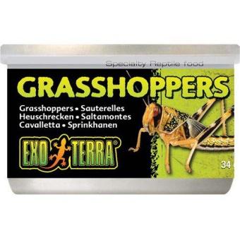 Gräshoppor 34gr konserverade